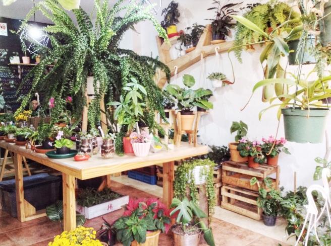 La mesa central llena de plantas
